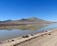 For arid, Mars-like desert, rain brings death