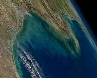 Model predicts future phytoplankton boom in tropics