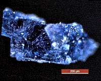 Ingredients for life revealed in meteorites that fell to Earth