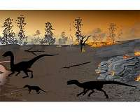 The 'firewalkers' of Karoo: Dinosaurs and other animals left tracks in a 'land of fire'