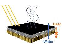 Purifying water with the help of wood, bacteria and the sun