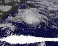 Tracking a typhoon's seismic footprint