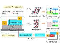 A versatile photodetector assisted by photovoltaic and bolometric effects