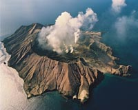 Scores dead, and many tourists injured after New Zealand volcanic island erupts