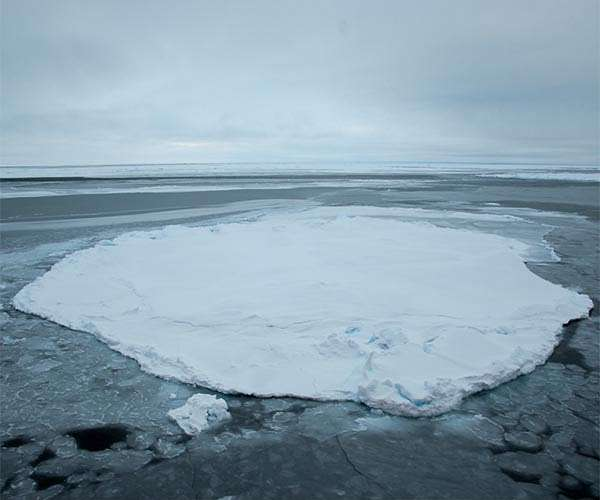 arctic-sea-ice-floe-beaufort-gyre-exploration-project-hg.jpg