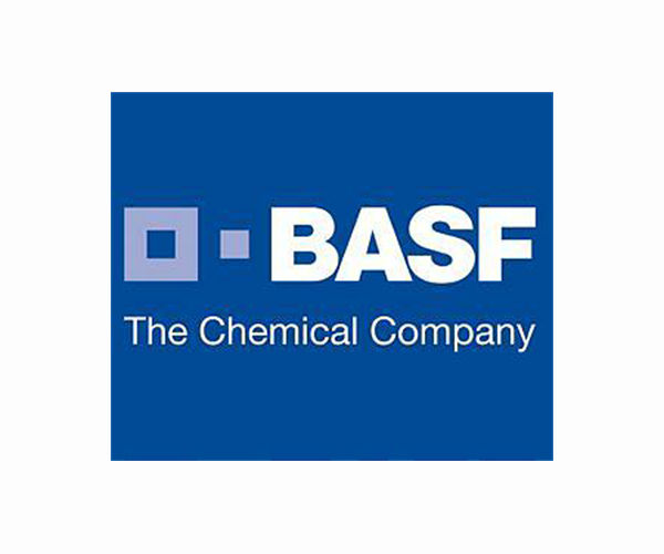 BASF in battery parts production deal with China's Shanshan