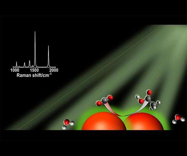 Light-harvesting nanoparticle catalysts show promise in quest for renewable carbon-based fuels