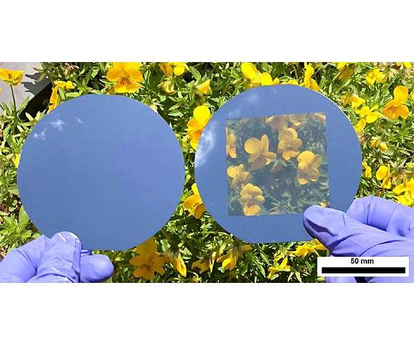 opaque-solar-cell-compared-neutral-colored-transparent-solar-cell-hg.jpg