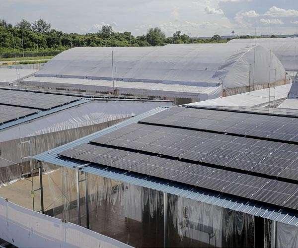 Singapore inaugurates new floating solar farm to meet energy needs