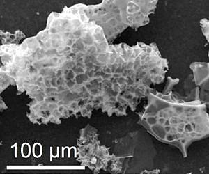 carbon-capture-material-particles-nitrogen-containing-porous-carbon-lg.jpg