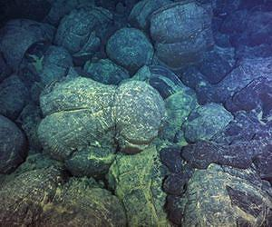 Magma from undersea eruptions congealed into forms known as pillow basalts on the Juan De Fuca Ridge, off the US Pacific Northwest. A new study shows such eruptions wax and wane on regular schedules. Image courtesy Deborah Kelley/University of Washington.