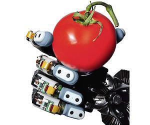 Main Robotique équipée des capteurs Biotac par la Viterbi School of Engineering