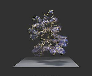 A visualization of a protein's structure. Image courtesy Ken Downing, UC Berkeley and LBNL.
