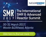 Develop commercial strategies for the global deployment of SMRs and Advanced Reactors